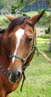 ducati blog riding