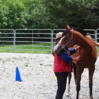 10. Feldenkrais – What Does it Have to Do With Horses??? ….everything….