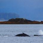 Part 113 – Five Go To Sea – Alaskan Adventures!
