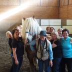 Part 117 – Clicker Training at Cavalia Retirement Farm