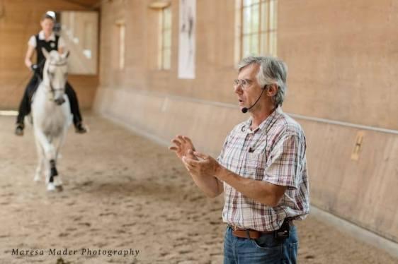anja horse breed